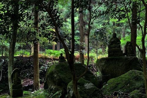 Mount Kosho Hike