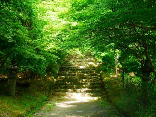 Early Akizuki, myths & legend